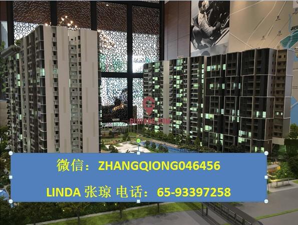 新加坡阿裕尼优质项目微信:ZHANGQIONG046456