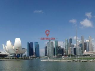 新加坡房地产经纪人的服务质量将被购房者和卖家评级
