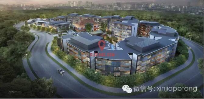 新加坡市场上性价比高的市区公寓,比邻总统府2房只需131万