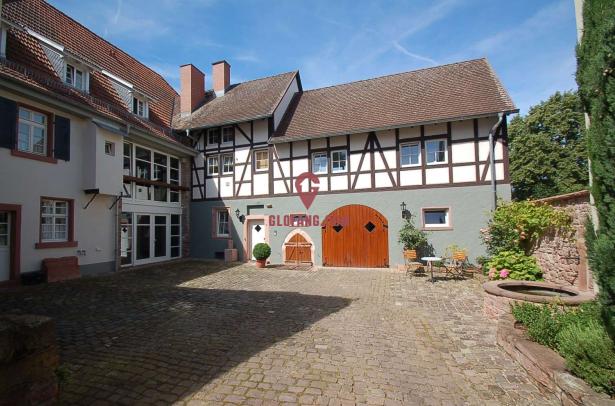 海德堡中世纪古堡出售,装修奢华,位置优越,编号11379