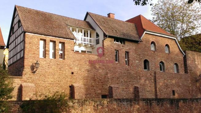 海德堡中世纪古堡出售,装修奢华,位置优越