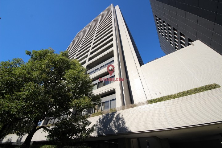 大阪天王寺区上町高级人气公寓