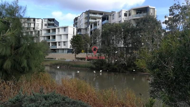 悉尼现房北向阳光房,一线水景公园,近市区