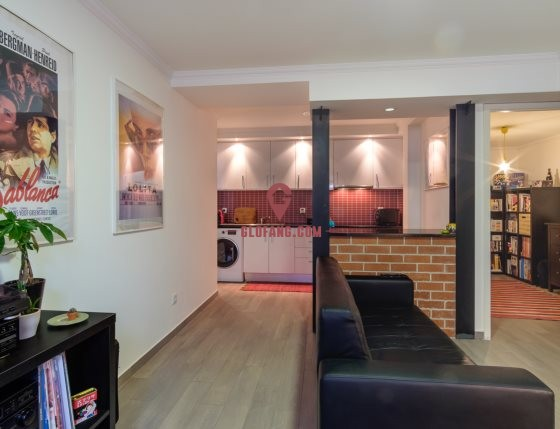 里斯本市中心Arroios精装修已翻新T1公寓出售