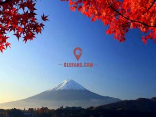 日本本科留学第一、二年需要交纳哪些费用?