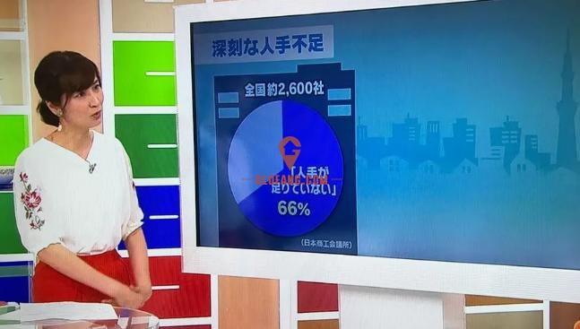 日本是否会走向移民社会