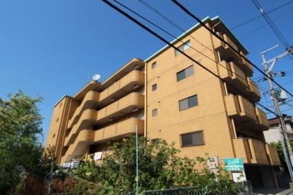 大阪整栋公寓可出租 人气学区房 大户型