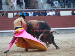 【西班牙斗牛士进行曲】如果禁止斗牛,西班牙每年可能损失36亿欧元
