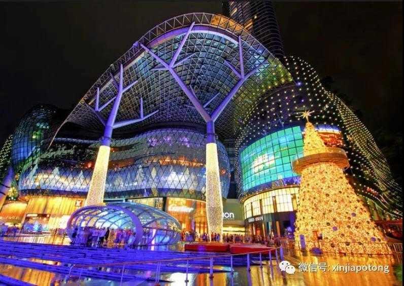 新加坡第10邮区豪宅项目,乌节三翠林,编号21667