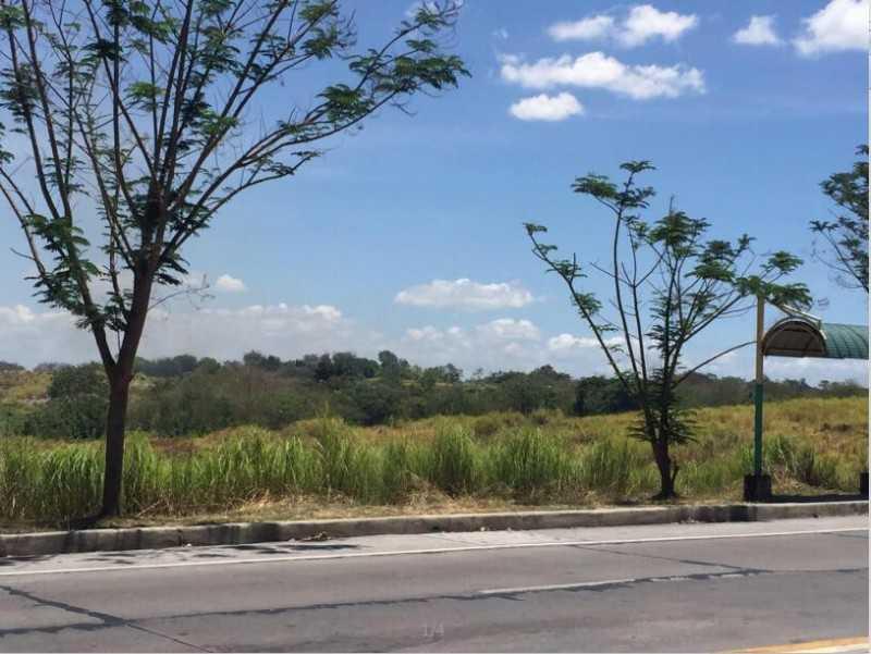 菲律宾甲美地60000平土地出售