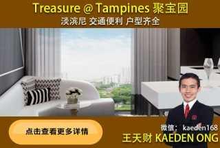 Treasure @ Tampines 聚宝园