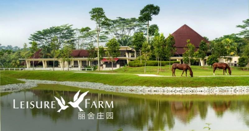 新加坡旁 最佳规划别墅社区 - 永久产权 双拼