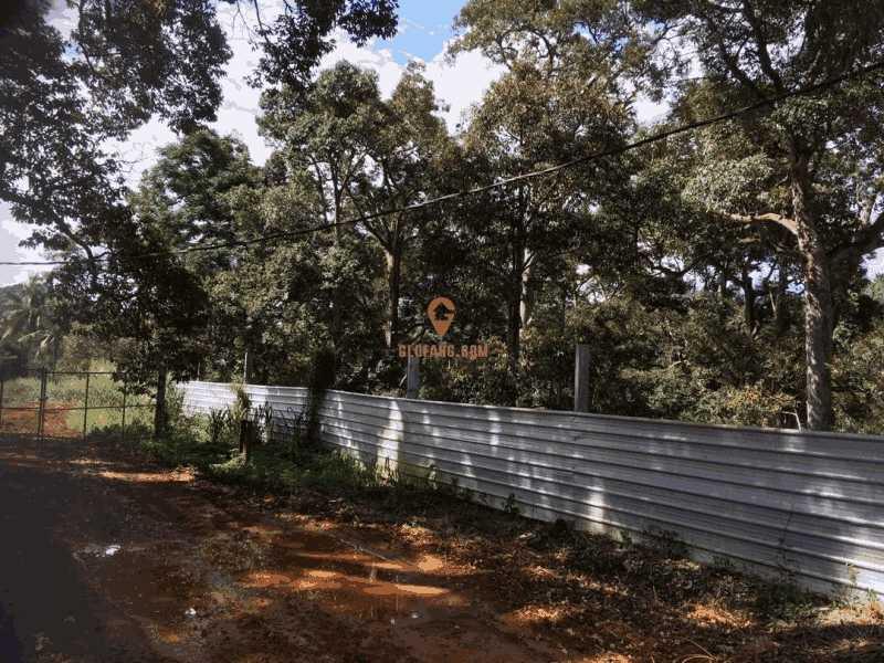 马来西亚柔佛巴莪 141 英亩果园出售