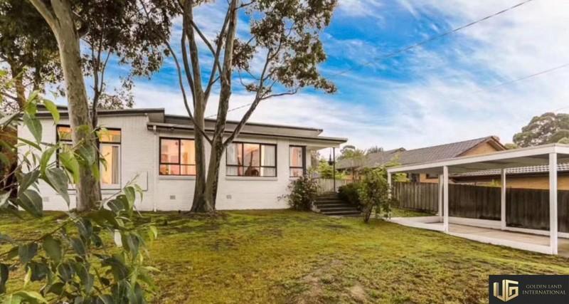澳大利亚墨尔本成熟东区,黄金拐角独栋房