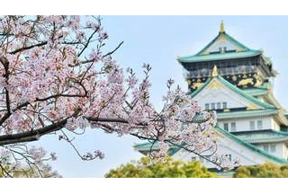 日本紧急出台这一政策,签证即将到期的你赶紧看看