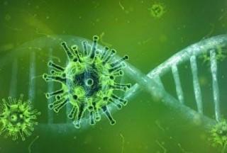 新型冠状病毒将对阿联酋房地产市场产生什么影响?