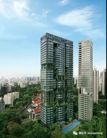 新加坡核心地段,稀缺的永久地契,最新8%优惠促销活动中