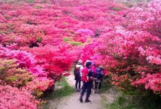 日本关西登山徒步旅行目的地10选