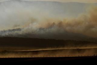 澳大利亚山火专题:详细了解澳洲丛林大火危机